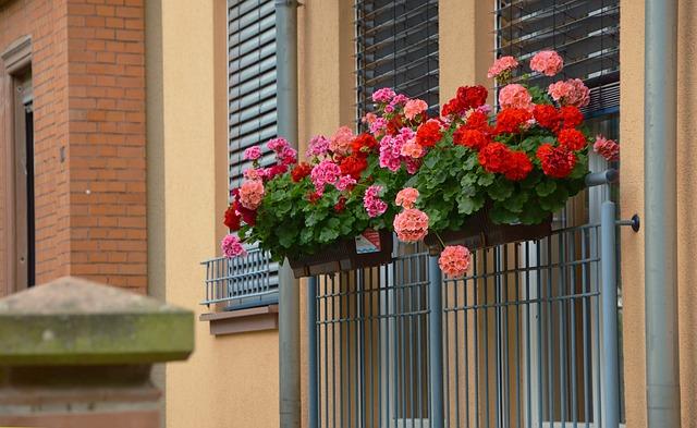 Botanická záhrada na balkóne