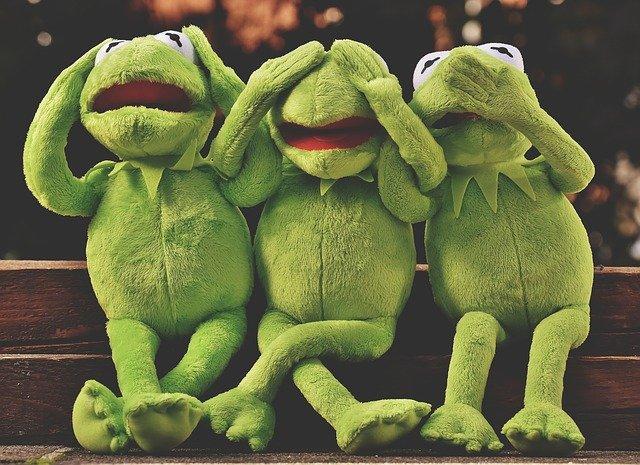 žaba Kermit