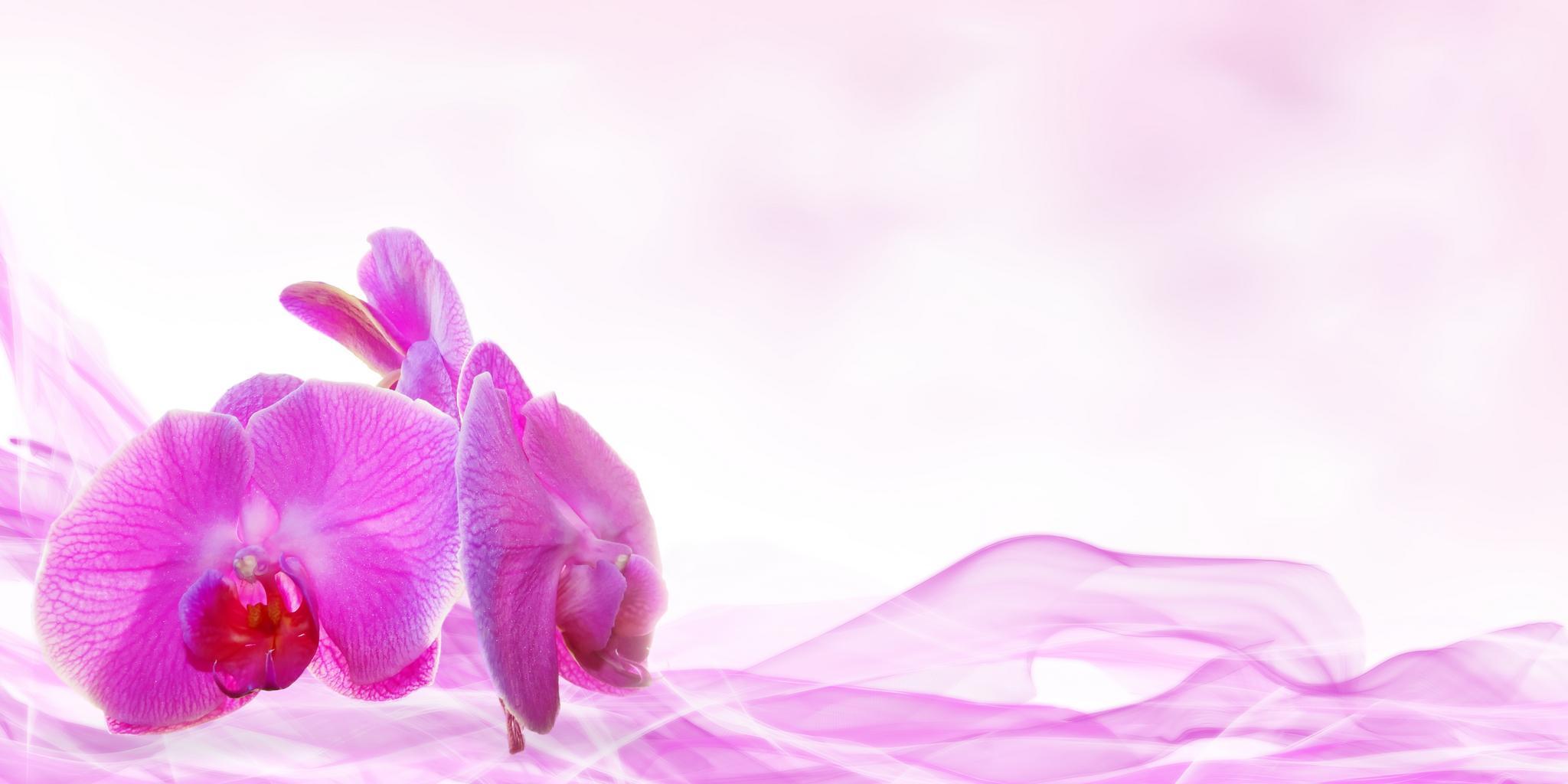 kvety, aróma